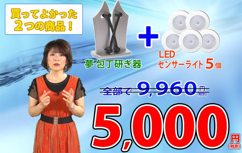 夢包丁研ぎ器+LEDセンサーライト5個セット